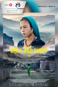 Wolf Sheep 1